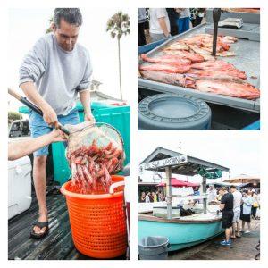 Dory Fish Market